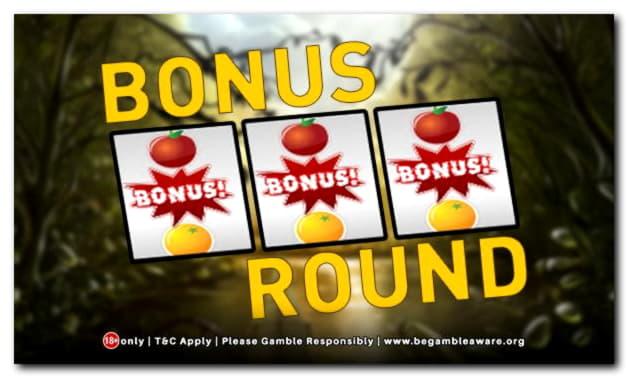 820% Best Signup Bonus Casino at Next Casino